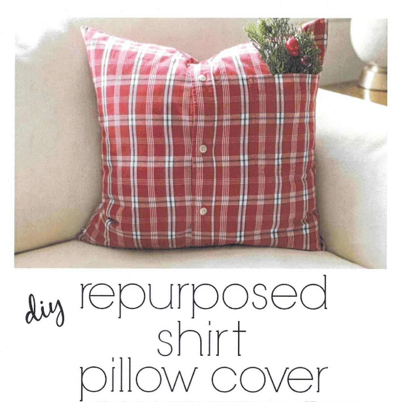 Shirt pillow 1